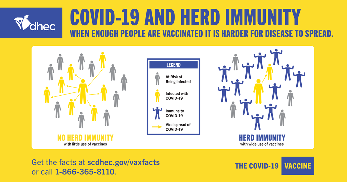 PNG - Yellow Graphic Showing Positive Effect of Herd Immunity