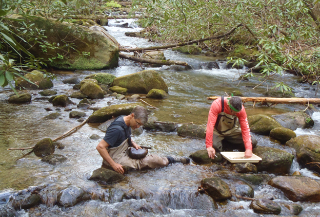 Biologists from DHEC's Aquatic Science Programs (ASP) sample streams across South Carolina by collecting macroinvertebrates.