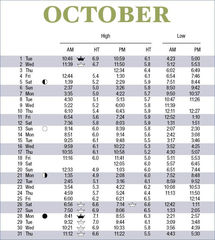 Charts Oktober 2019