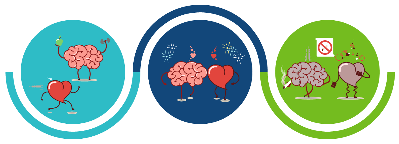 Brain Health Connection Banner