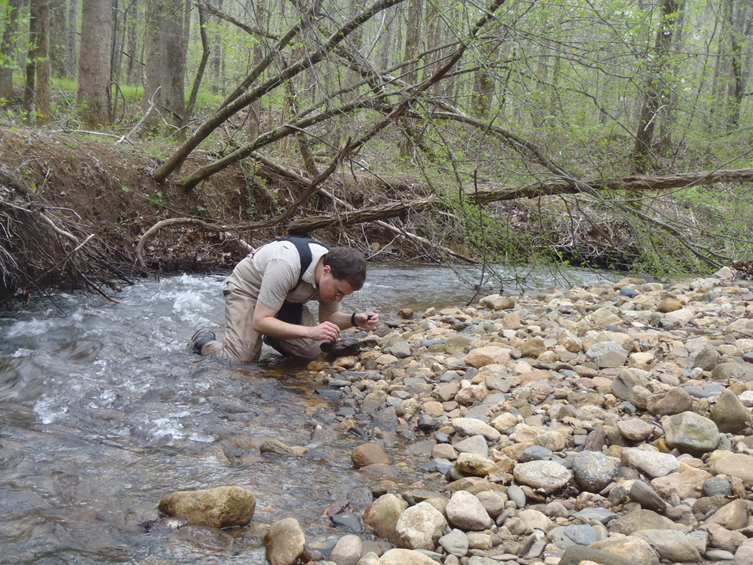 Biologists from DHEC's Aquatic Science Programs (ASP) sample streams across South Carolina by collecting macroinvertebrates