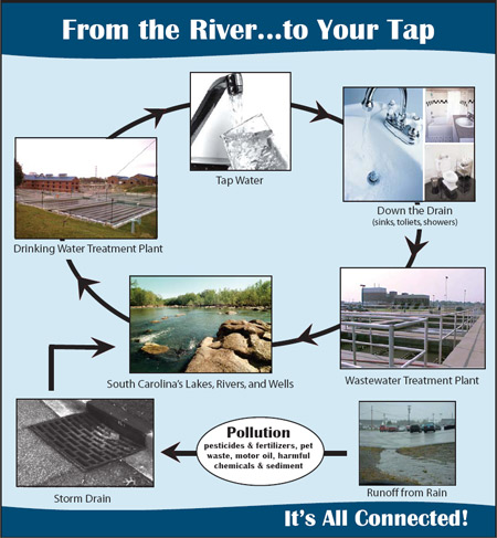 From the River...to Your Tap. It's All Connected!