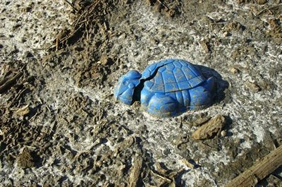 Photo by: Jennifer Wolf/ WolfHartt Image/ Marine Photobank - child's toy left on the beach.
